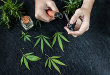 Cannabis liquid. Vape CBD or THC, Vaping Marijuana Leaves and Hemp. On a dark background. Hands run the vape.