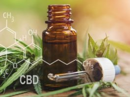 How To Find the Best CBD Product